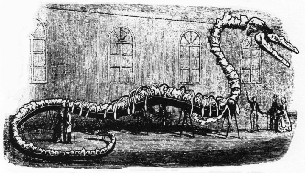 Wąż morski Hydrargos według Alberta Kocha.